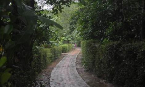 PhieuLangMuaDong01_09