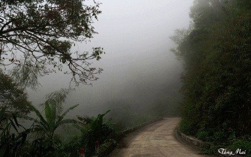 Nói với chân, đường xa đã đi, không lối về… biển mù sương che … Photo: TongMai