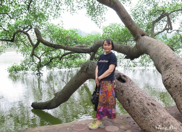Hồ Gươm - Mai