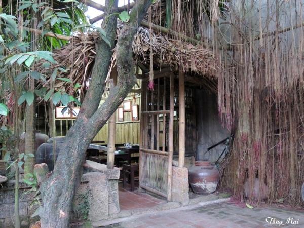 Làng cổ Đường Lâm. Nhà cổ, ông Ng V. Hùng. Giây tơ hồng. Photo: TốngMai