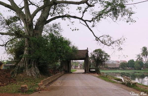 Làng cổ Đường Lâm - Cổng làng Mông Phụ Photo: TốngMai