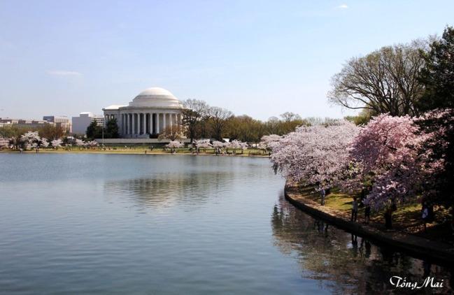 Mai 2013 - DC Sakura0