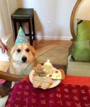 Ngày tôi lên bảy, Ba Me làm sinh nhật cho tôi.