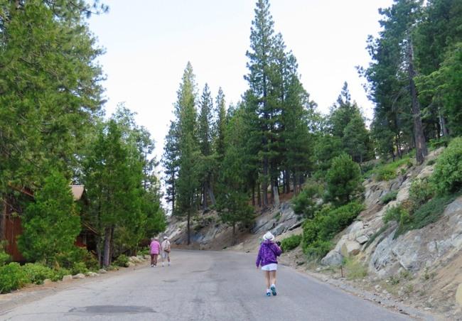 Chung quanh Black Oak cabin