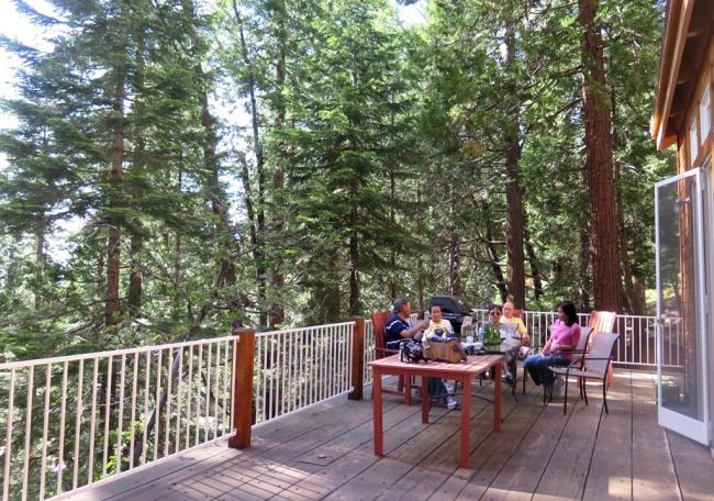 Mai 2014 - Yosemite - Cabin trong rung2