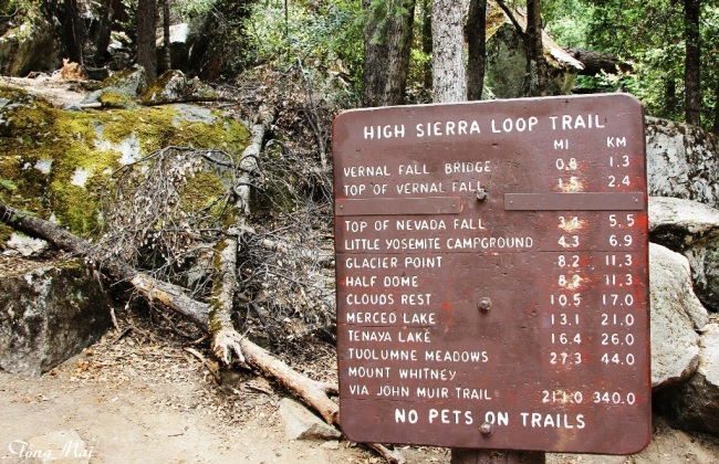 Mai 2014 - Yosemite - Hiking trails p