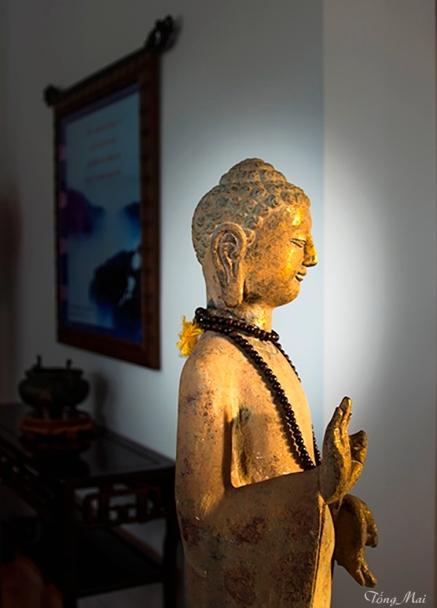 mai-2016-buddhas-2