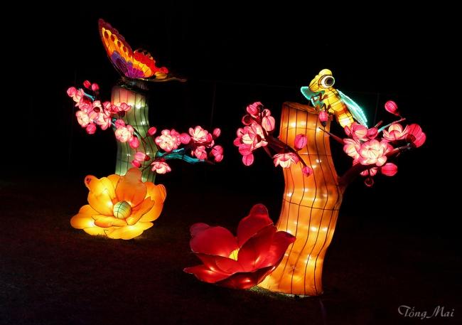 mai-2016-chinese-lantern-festival-2h-p