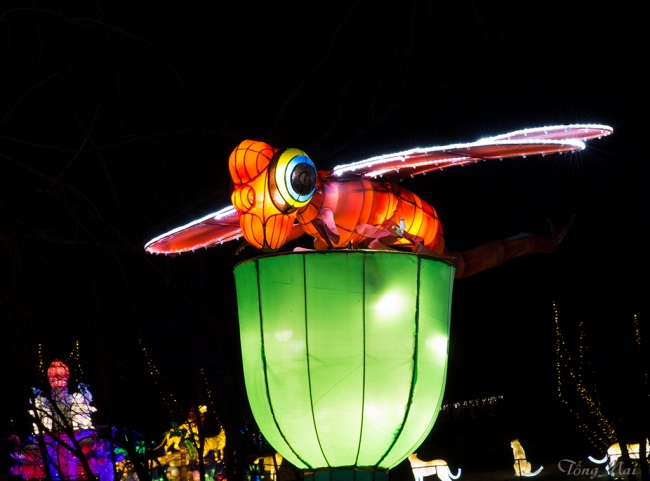 mai-2016-chinese-lantern-festival-2m-p