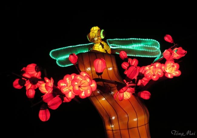 mai-2016-chinese-lantern-festival-3-p2