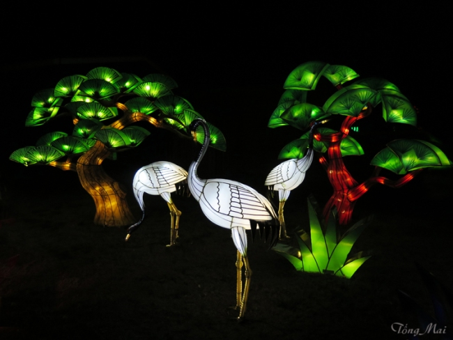mai-2016-chinese-lantern-festival-3f-p2