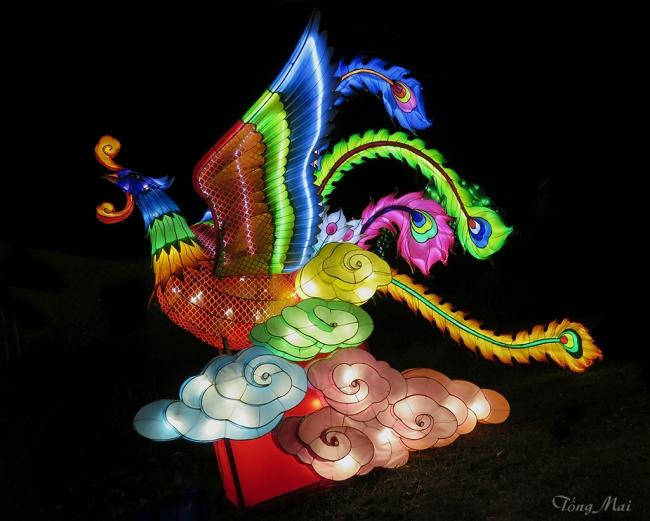 mai-2016-chinese-lantern-festival-3k-p2