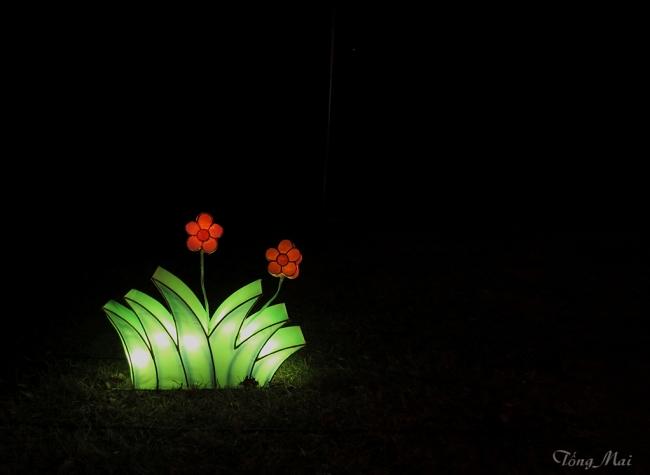 mai-2016-chinese-lantern-festival-3p-p