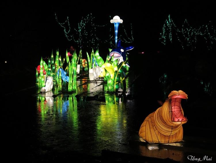 tongmai-2016-chinese-lantern-festival-p